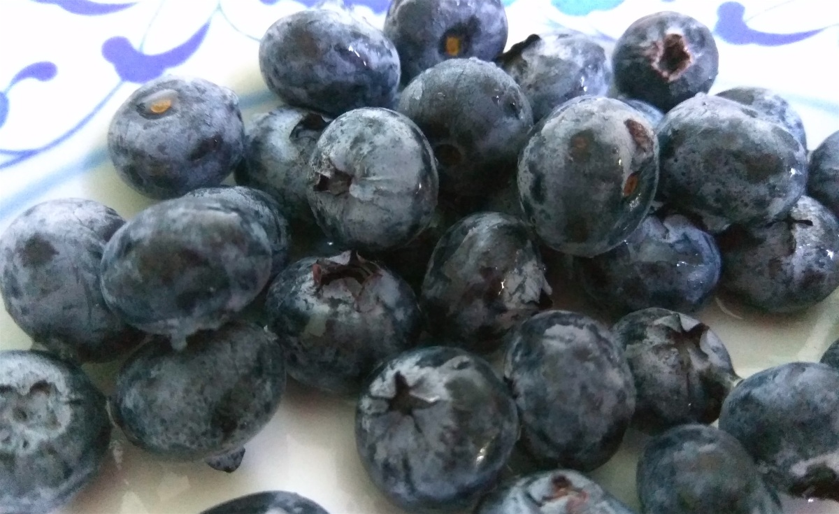 Very Blue (Vegan) Blueberry Muffins