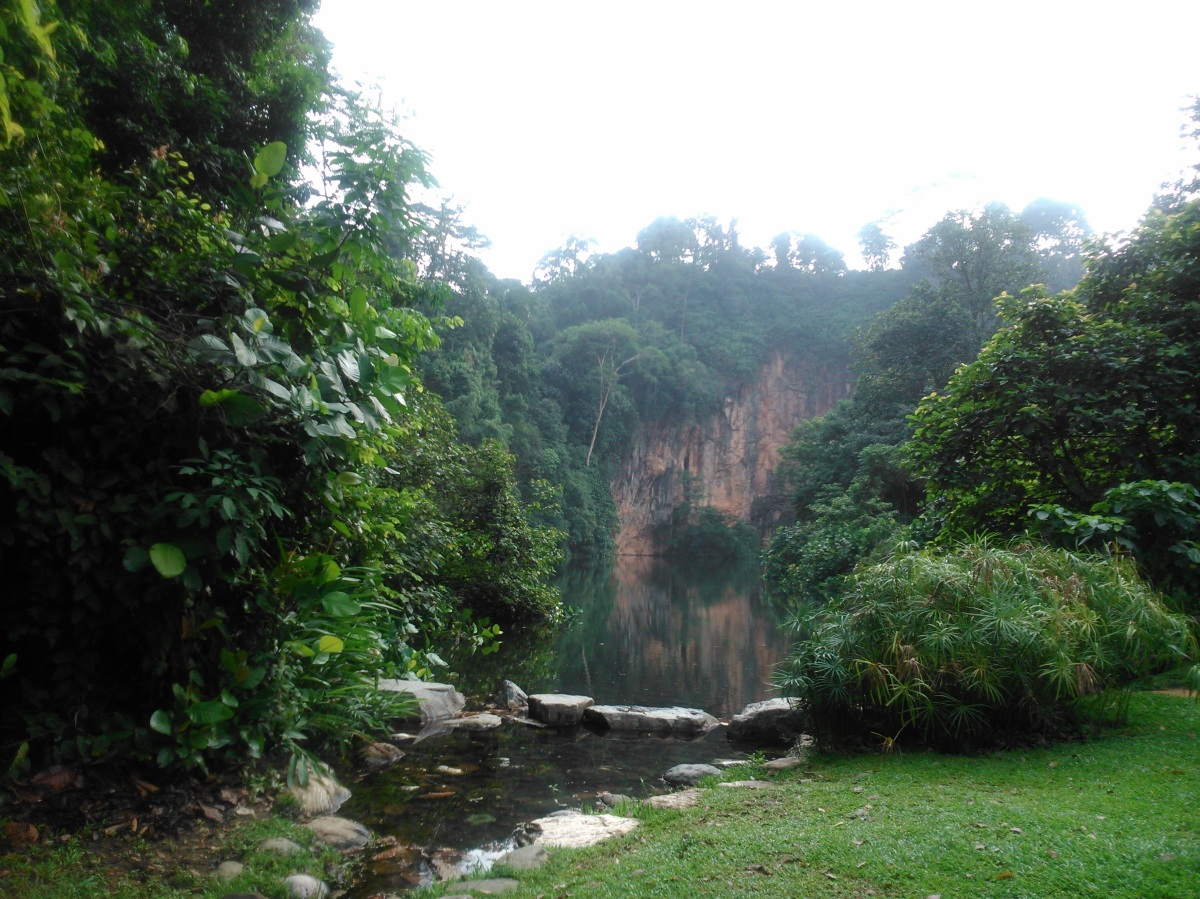 One of my Favourite Places: Bukit Batok Nature Park