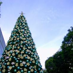 Pretty pretty tree outside Forum The Shopping Mall
