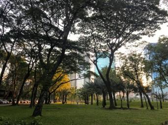 The serenity of Benjakiti Park