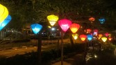 Lanterns to light up the trees!