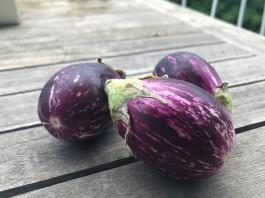 Eggplants bound for ratatouille.