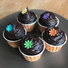 Dark chocolate cupcakes with dark chocolate frosting