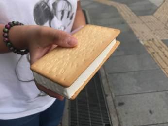 Ice cream sandwich for dessert.